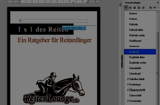 Cover-Bild-eingefuegt-ueber-die-Kopfzeilen-Funktion-open-office